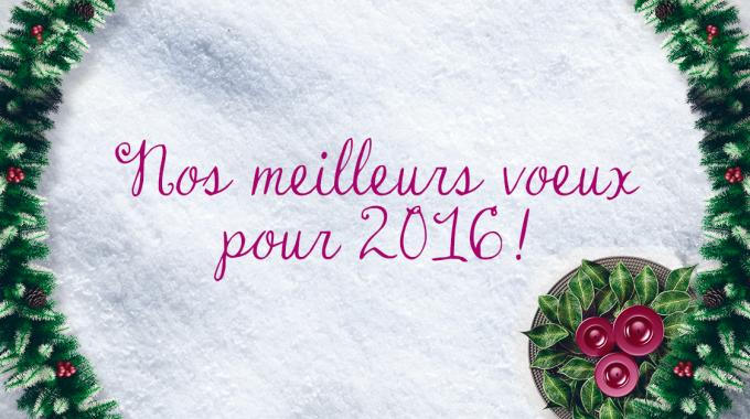 Nos Meilleurs Voeux Pour 2016