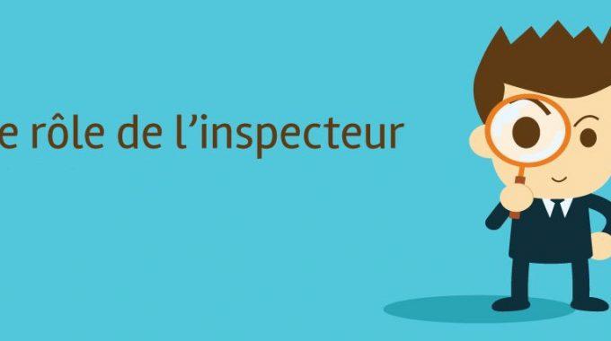 Qu'est-ce Que L'inspection Professionnelle?
